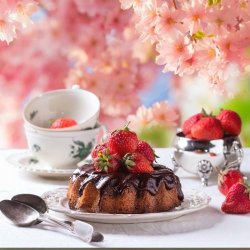 Rózsaszín cseresznyevirágos fotóháttér