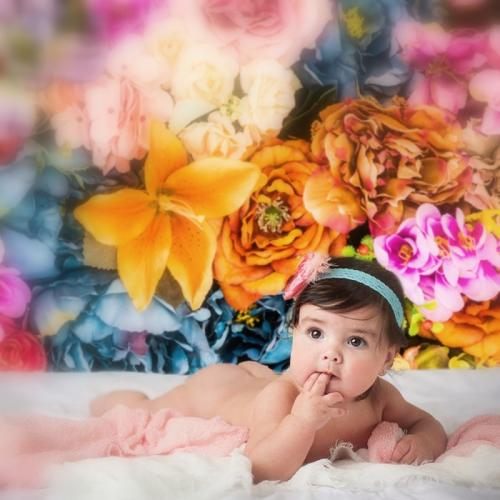 Színkavalkád virágfal fotóháttér